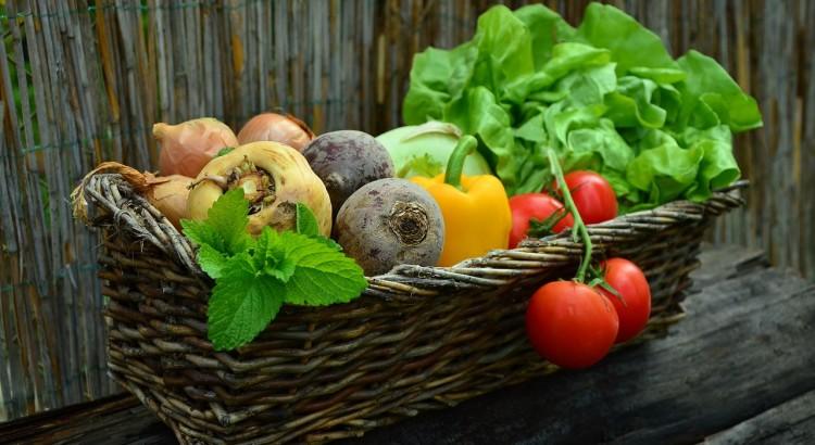 Vitamine und die Nahrungsergänzungsmittel